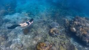 Freediving in Limasawa Island 2