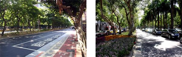 Urban Streetscapes in Taipei, Taiwan