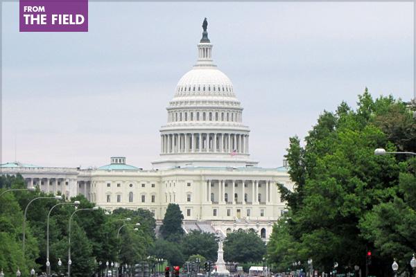 Capitol Building, Washington, DCimage: Shavawn Coleman