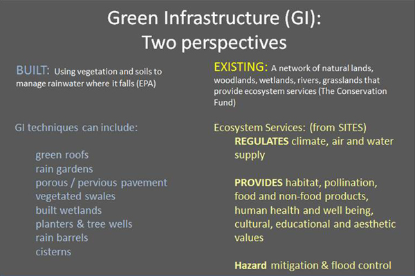 """Information on the types and functions provided by """"Built"""" and """"Existing"""" Green Infrastructure systems. image: Martha Sheils"""
