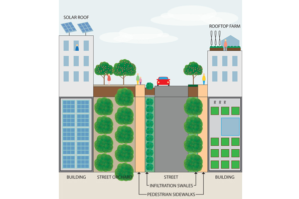 Green infrastructure image: April Philips