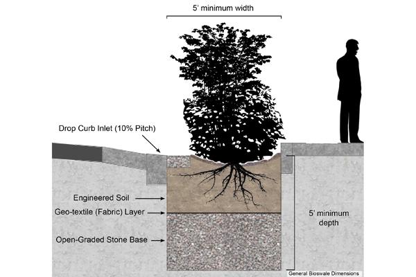 General bioswale dimensions image: Ethan Dropkin