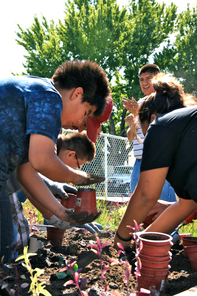 Schmitt Elementary Learning Garden volunteer build image: Lois Brink