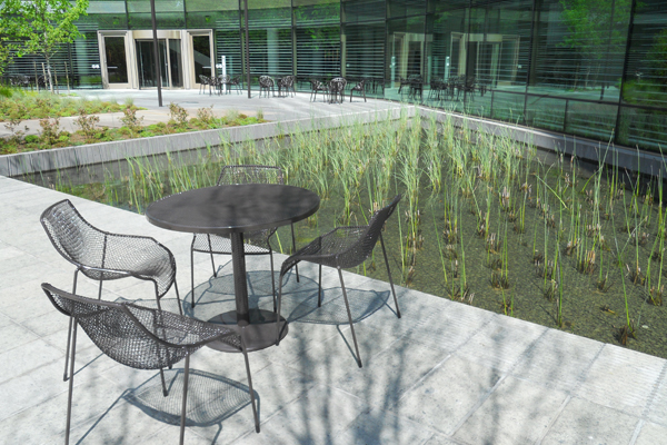 Image 2: Gates Foundation Iris Campus: View of Natural Water  image: CMS