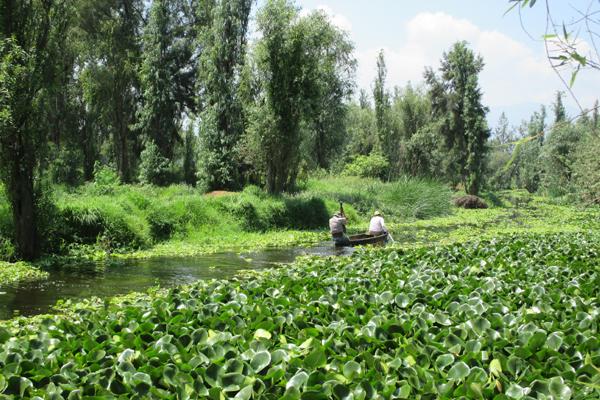 Canoe on canal in Xochimilco image: Erik Mustonen