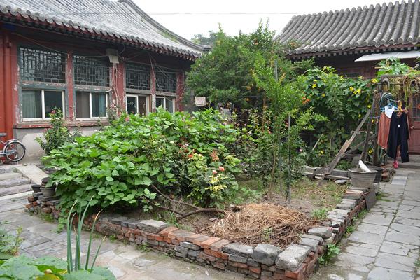 Traditional courtyard home interior garden image: Shawn Balon