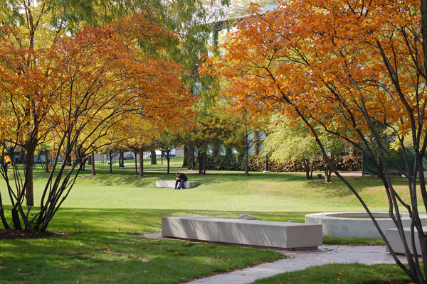 Crown Hall Field in fall image: courtesy of Hoerr Schaudt