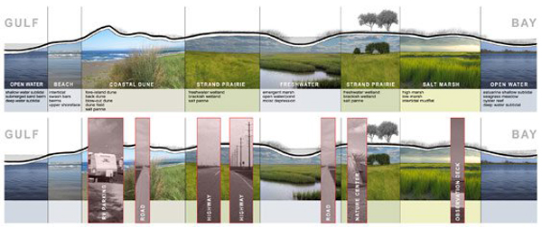 images of the barrier island were drawn by Studio Outside. image: Biohabitats