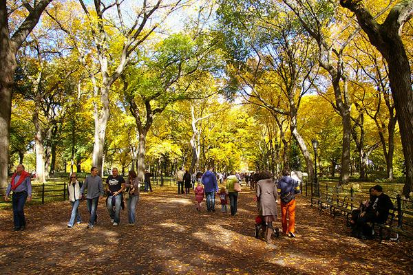 Central Park image: Remi Ravaz via Flickr