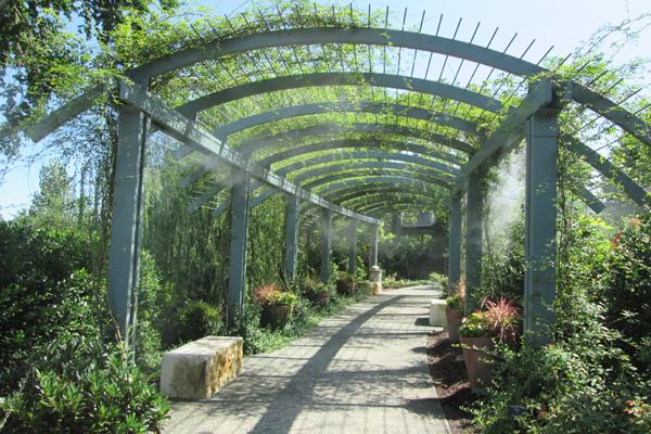 Arbor provides dappled shade and mist in summer image: Lisa Horne