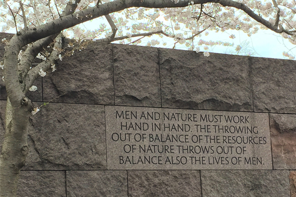 The Franklin Delano Roosevelt Memorial in DC (designed by Landscape Architect Lawrence Halprin) really captures the spirit of national parks with a series of outdoor rooms surrounded by sculptural stone, naturalistic plantings, waterfalls and many inspirational quotes - which collectively tell the story of FDR and the country at the time of his presidency. image: Jennifer Nitzky