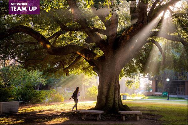 Tulane University image: Paula Burch-Celentano / Tulane University