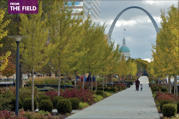 Citygarden, St. Louis, 2011 Professional ASLA Honor Award, General Design Category image: Nelson Byrd Woltz Landscape Architects