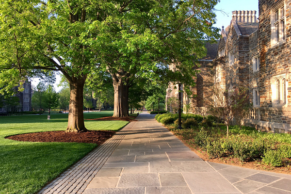 Abele Quad at Duke University, designed by the Olmsted Brothers, restoration design by Reed Hilderbrand / image: Mark Hough