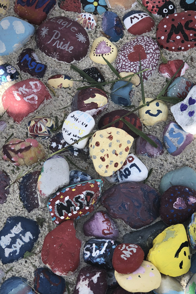 Painted rocks - messages of positivity / image: Kyle Jeter