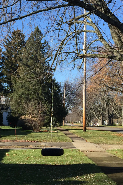 Front yard tire swing