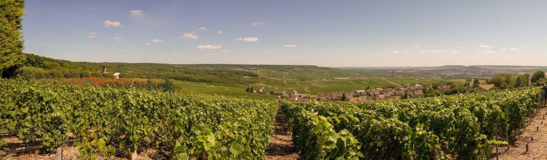 Fiery guide to Champagne region