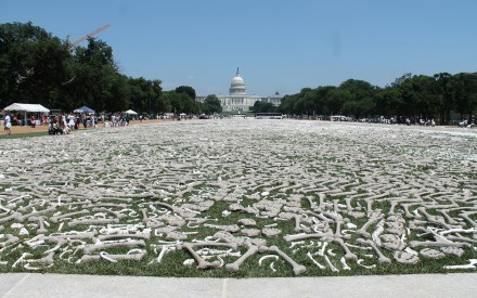 One million bones in DC. Image Source: Elvert Barnes, Flickr, Creative Commons
