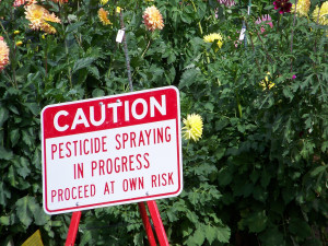 Image Source: jetsandzeppelins, Flickr, Creative Commons Pesticide spraying
