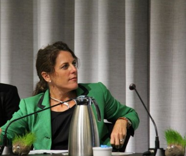 Romilly Madew at Green Cities 2013