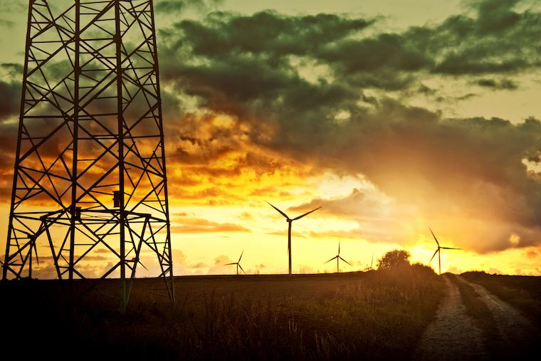 ACCC NEG energy