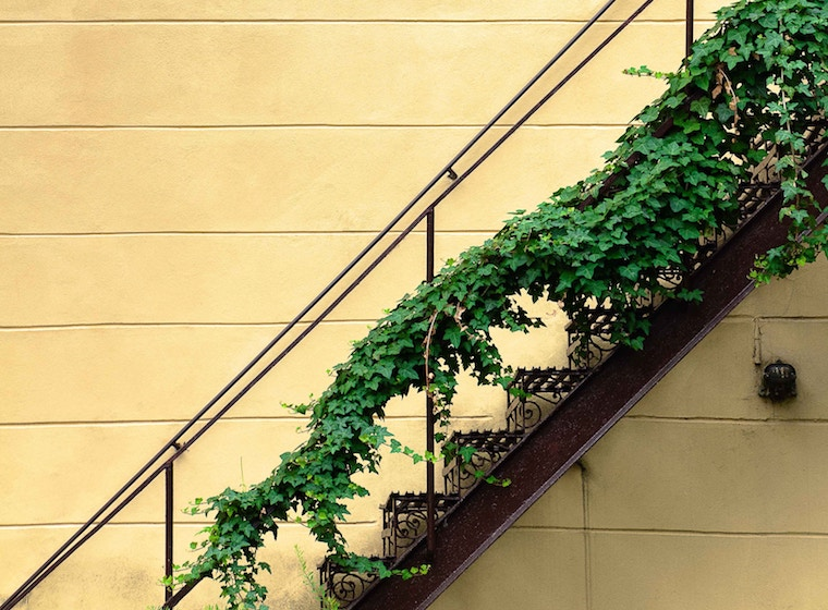 yyellow stairs green creeper