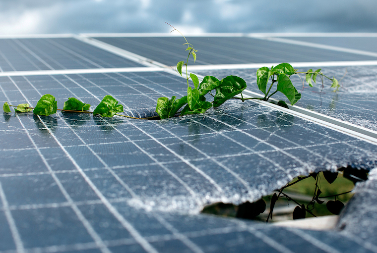 solar panel waste