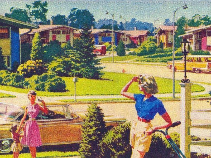 suburban dream illustration