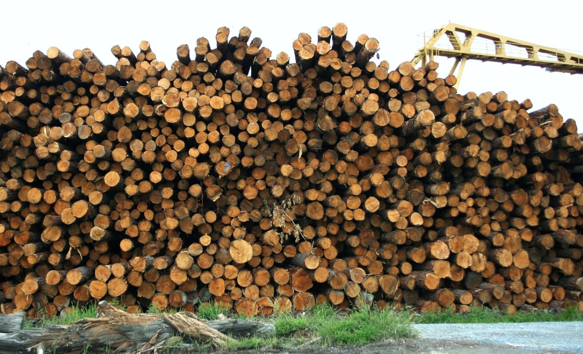 Some facts about timber, steel and concrete and the growing debate