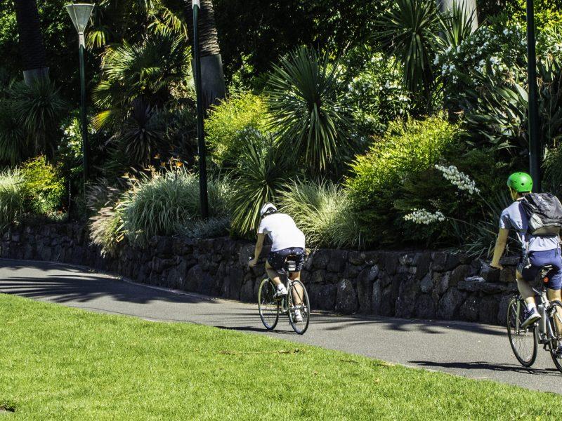 cyclists on bike path