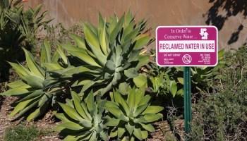 Sign advising of reclaimed irrigation water in use