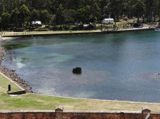 View of the lake from the tower.