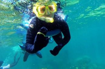 Reef13