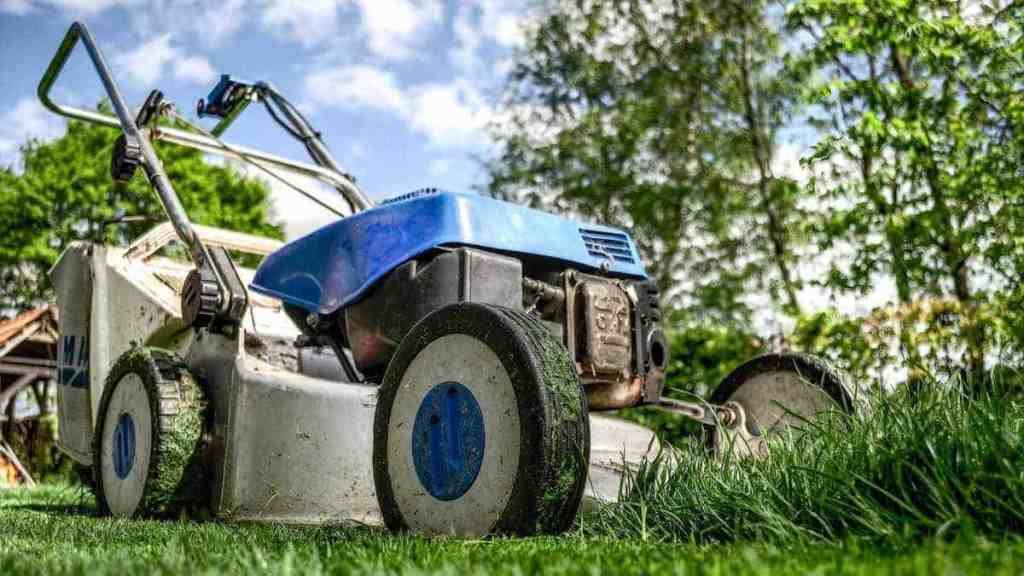 how to start a landscaping business in college