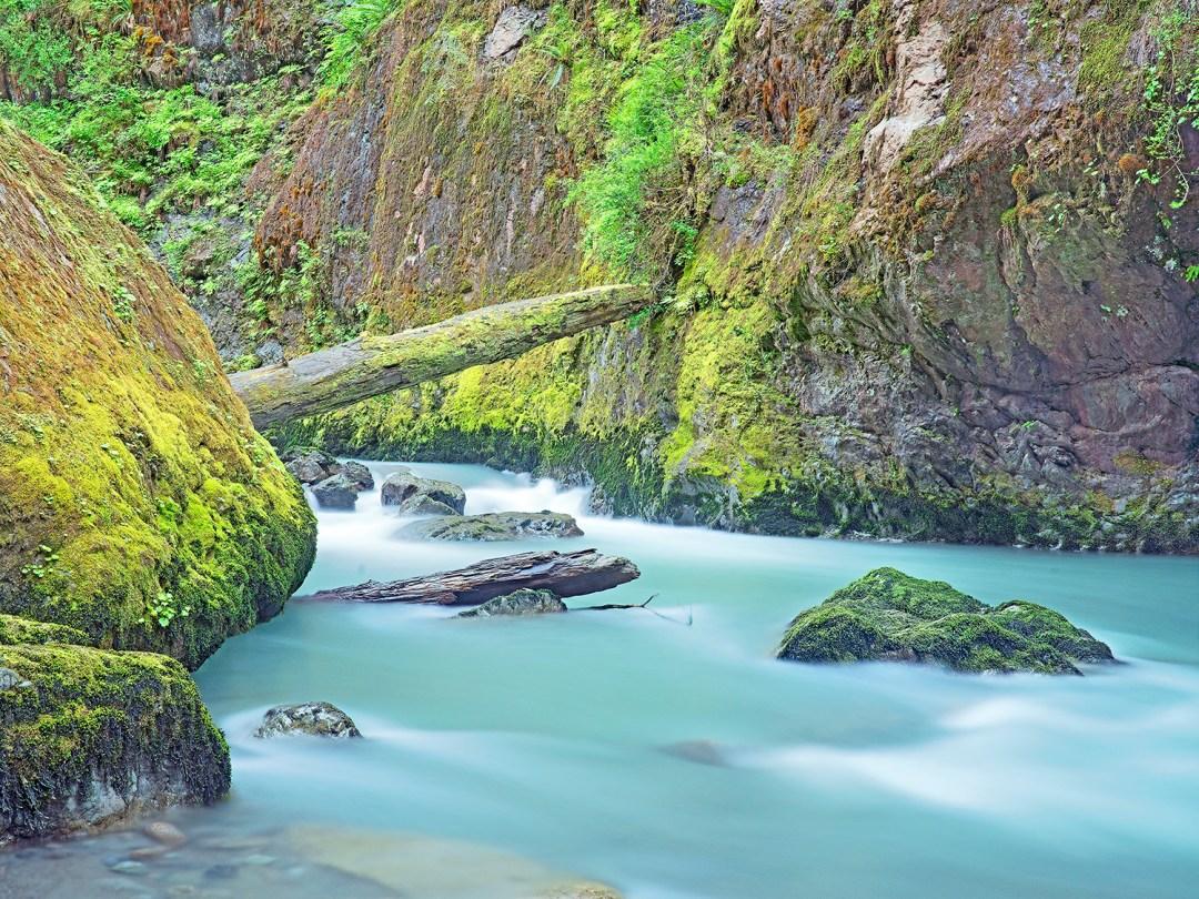 Boulder Creek #1