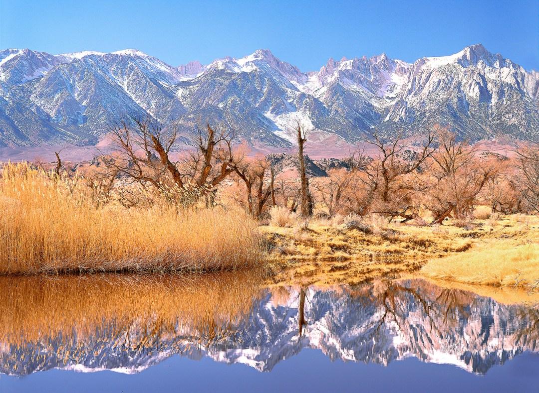 Sierra  Nevada Mts. Portrait