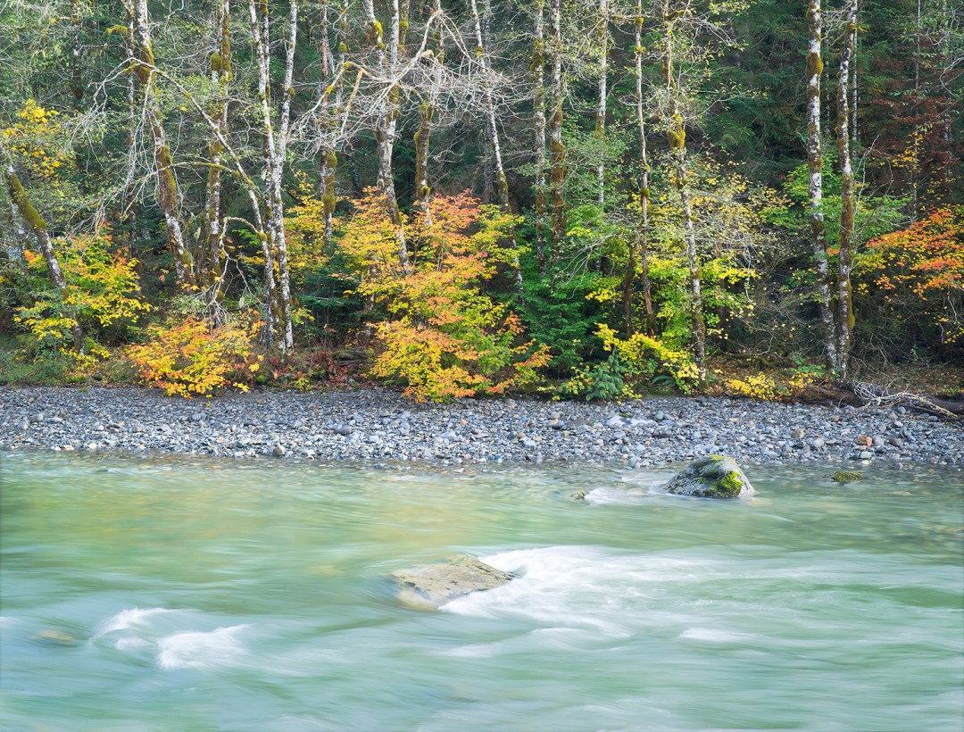 Stillaquamish River Autunn