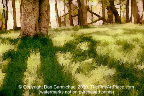Shadows in the Grass - a painting from a photo taken along the Blue Ridge Parkway