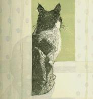 Vanessa Lubach - Cat on a windowsill