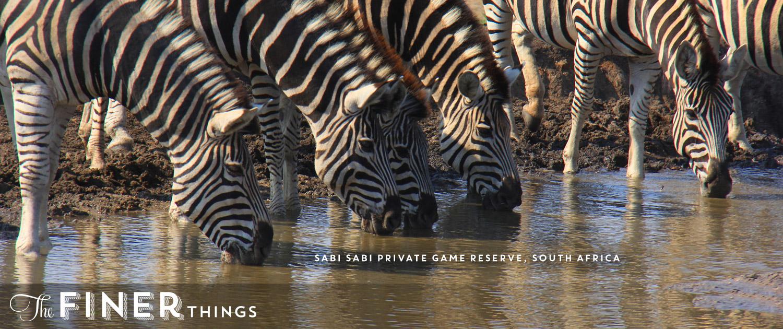 Sabi Sabi Private Game Reserve - The Ultimate African Safari