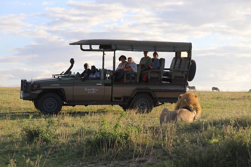 The Serengeti - my top 12 tips for going on safari - The