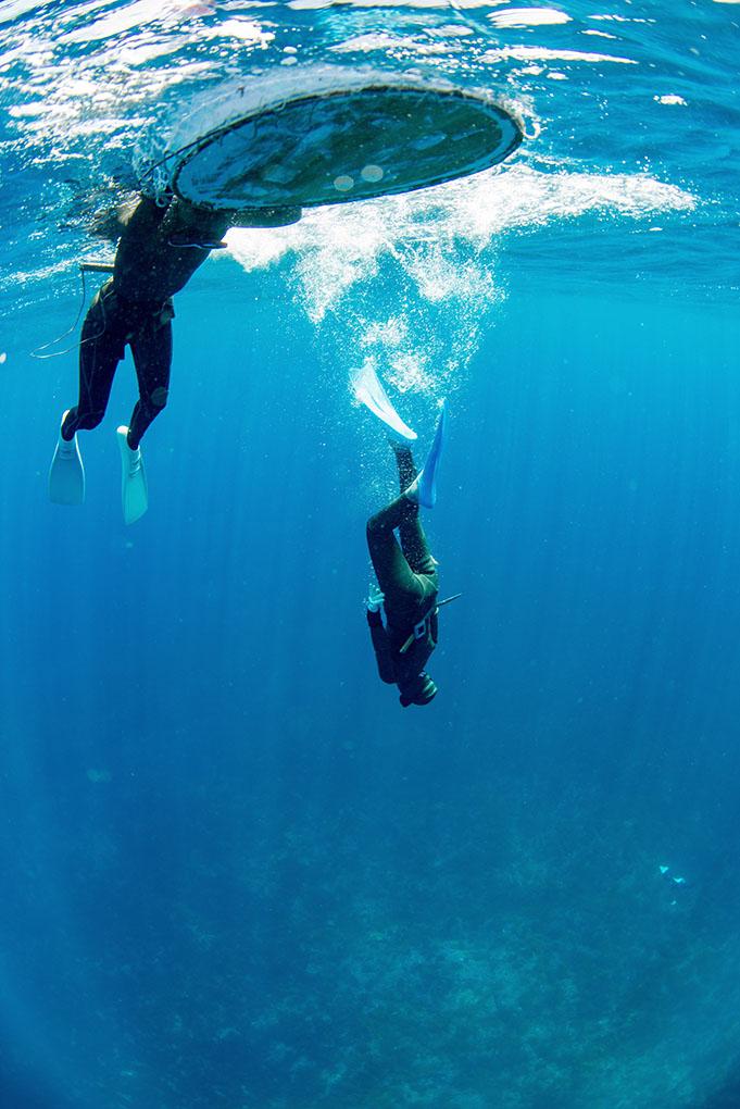 Ishikawa, Japan, divers,