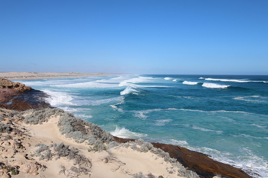 Eyre Peninsula, South Australia, Ceduna, Australian Coastal Safaris