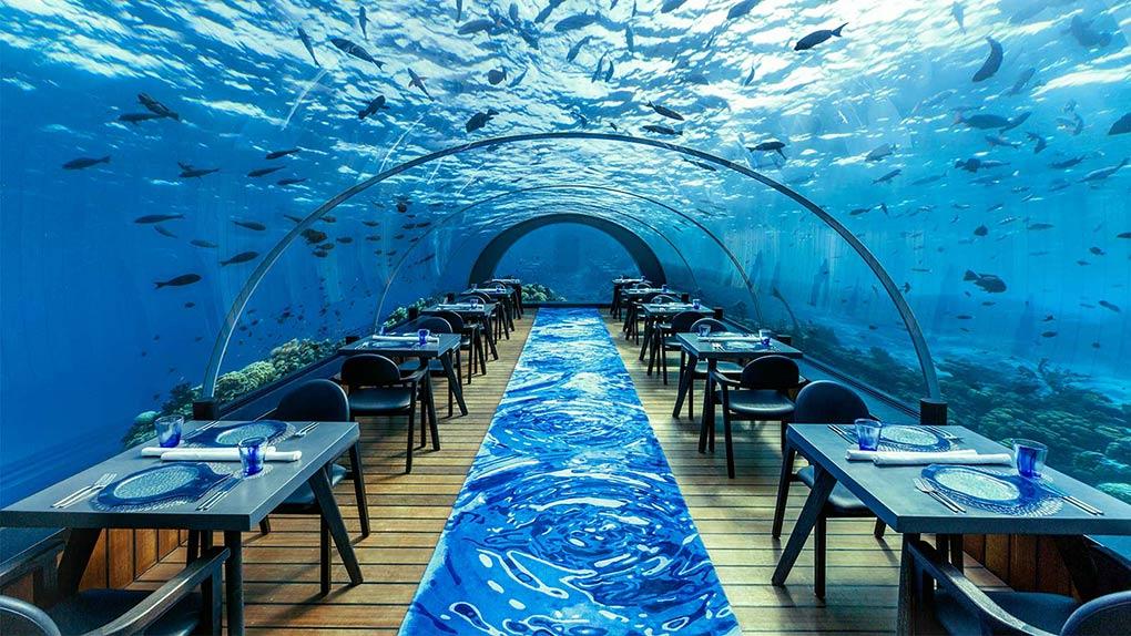 dining underwater, The Maldives, Hurawalhi, luxury underwater restaurant