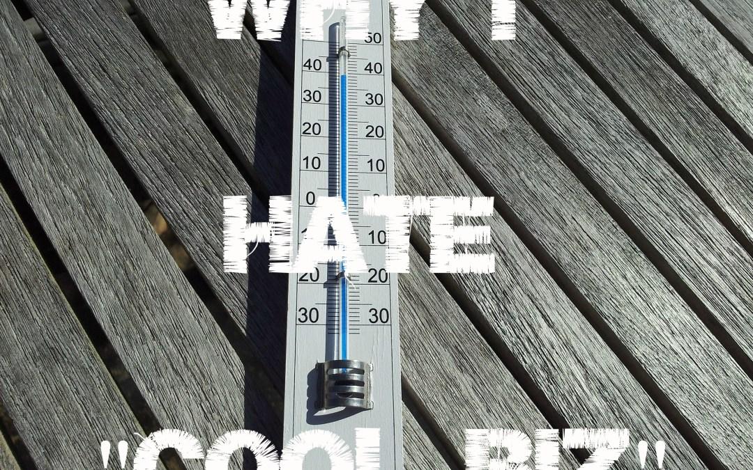 """Why I Hate """"Cool Biz"""""""