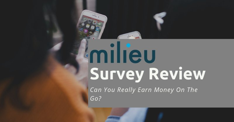 Milieu Survey Review