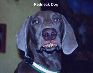 Redneck Dog