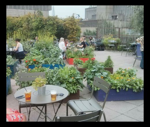 The roof gardens at the South Bank Center