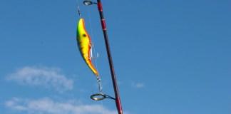 Fishing Plugs