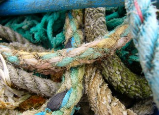 Best Flyfishing Season in England